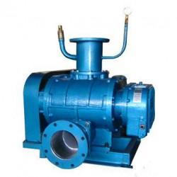 WSR-50罗茨真空泵