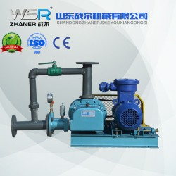WSR-100化工行业专用罗茨鼓风机